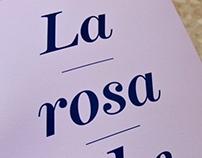 La rosa che c'é / Book Cover