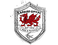 Cardiff City FC Academy murals