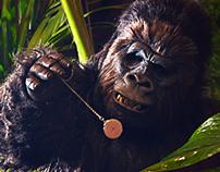 D-Smart - Hypnotize / Gorilla