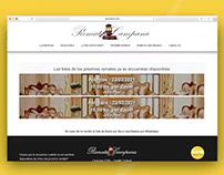 Remates Campana | Diseño Web