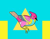 Birddd