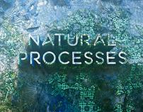 Natural Processes
