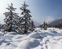 Winter im Almtal