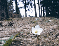 MY FAV PLACE ≈ JEZERSKO / CINEMAGRAPHs / GIFs