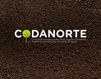 Logotipo - Codanorte