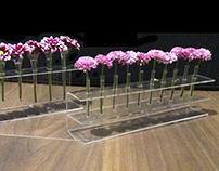 Expresión Tridimensional: Plásticos, Floreros