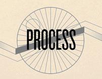 DAMS Process Model