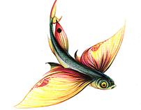Exocoetidae