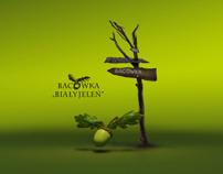 Bacowka Guesthouse
