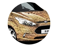 Print Coated Ford B-MAX