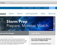 Citizens Website Redesign