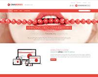 Cranberries, Magento Retina Fashion Shop Theme