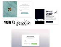 Newsletter Sign Up Forms - Adobe xD - Freebie