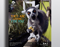 Zoo America • Advertisment