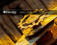 Elevate Group Website