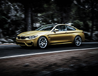 BMW M4 - Forest Road