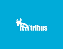 Brand Identity for Tribus.com
