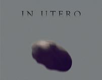 IN UTERO (2010)