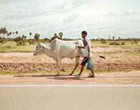 Roadside, Cambodia
