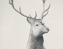 Deer in pointillism technique