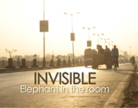 Documentary - Invisible elephant in the room