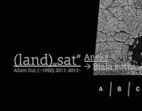 "(land)""sat"", (1990) 2011-2013-"