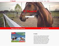Basic website for veterinary office