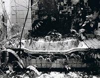 Urban Decay (Black & White Film Photography)