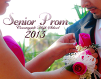A NIGHT TO REMEMBER. SD3 2013 Prom Photoshoot