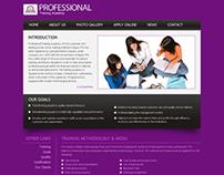 Professional Training Academy