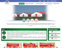 Corporate website for Agrisol International