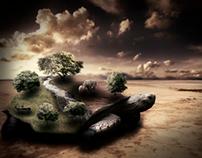 Surreal Turtle