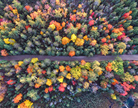 Images to Get You Excited About Fall