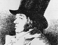 Versionando a Goya.