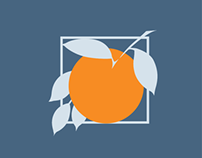 Orange County Government, Florida - mobile iOS icons