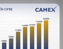 Camex Flash Presentation