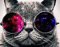 Cool Cat v.2