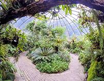Zürich Botanischer Garten