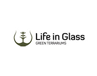 Life in Glass (2018)