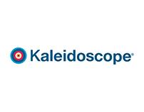 Kaleidoscope Infographic