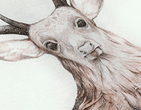 """Deer"" Illustration for a Poem by Juhász Ferenc"