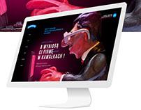Auditor company website