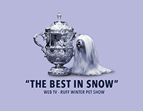 The Best in Snow