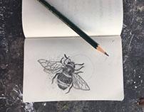 C'est la bee