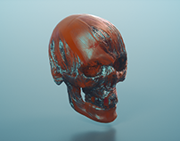 Octane Render Tests