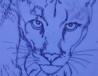 I-CatSales LOGO Design/Development