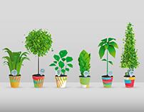 Vidzeme University of Applied Sciences / Plants