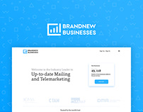Brand New Business Website