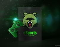 Comprehensive branding of the esports team