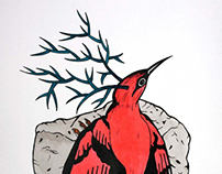 birds with horns 2